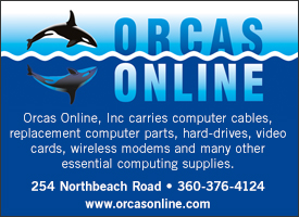 box_ad_orcas_online